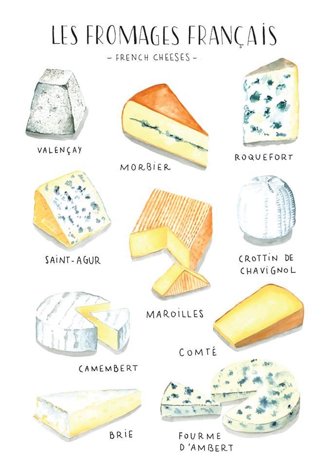 ilustracion quesos franceses