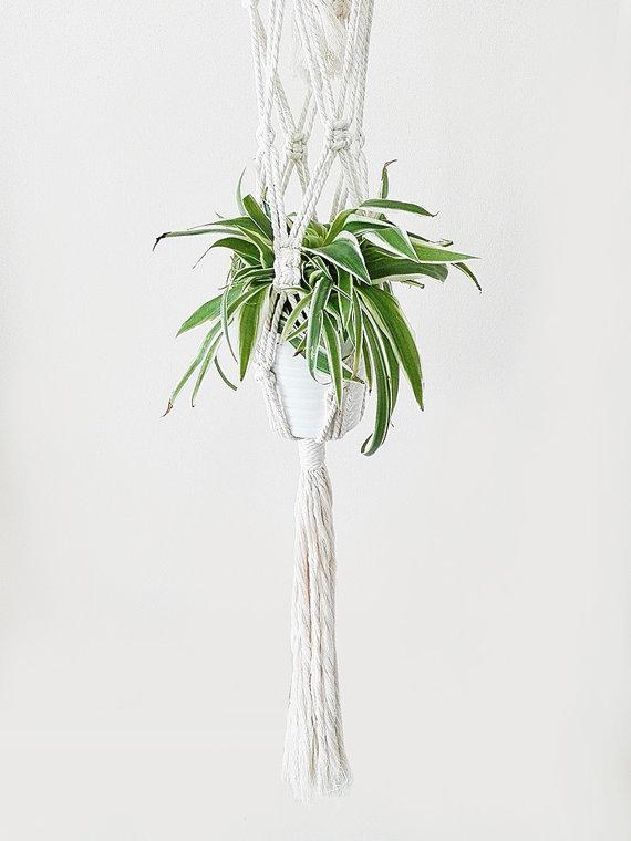colgador-plantas