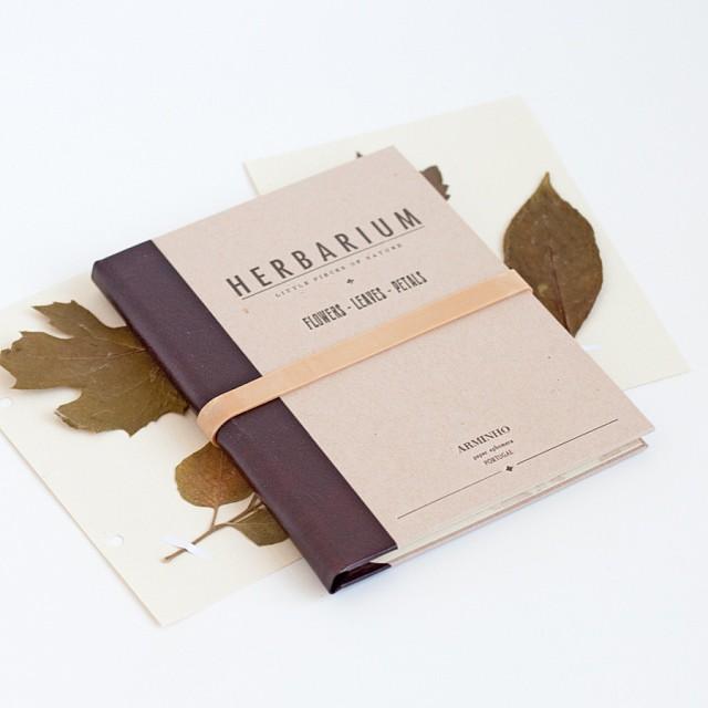 herbarium-arminho