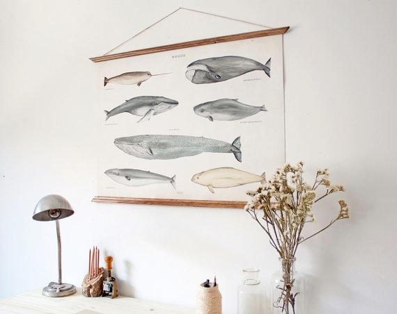 poster-ballenas-deco