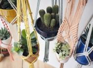 Colgadores para plantas de Nuga Macramé